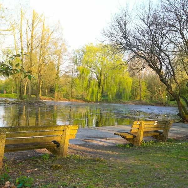 Charlton Lakeside benches and lake