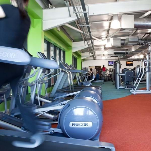 Ripley gym