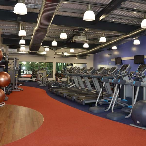 Godalming gym